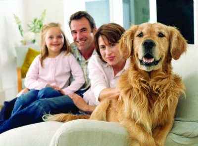 Alarm system for houses with pets